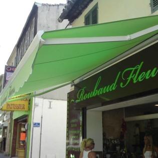 Installation d'un store pour le magasin de fleurs Roubaud de Saint Loup à Marseille